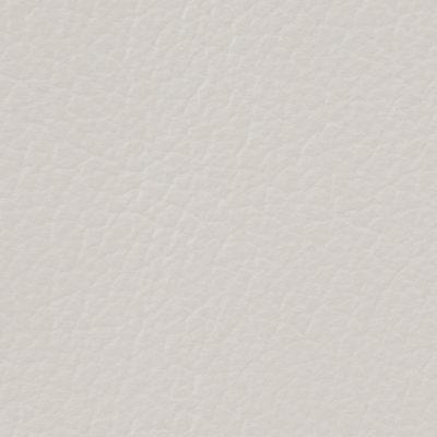 Soft Gray (Standard)